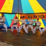 Der Taekwondo Verein auf der Bühne