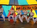 Weltkindertag2016_Buehne_Taekwondo