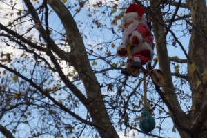 Der radelnde Weihnachtsmann vom Neuhauser Weihnachtsmarkt.